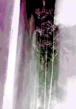 China Delicate Bamboo Lavender Purple