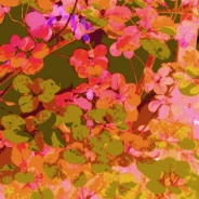 Leaves Square Pink Green