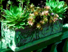 Stone Planter Succulents Green