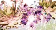 Stone Planter Succulents Pink