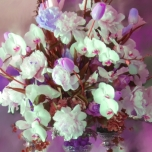 Tommy Centerpiece Pinks Lavenders