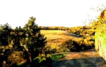 Casellare landscape 1 greens560