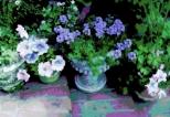 From a beautiful garden!