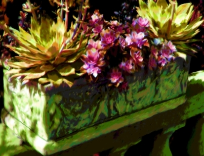 Stone Planter with Succulents Yellow and Pink